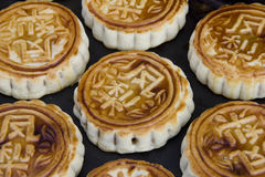Korean moon cake Royalty Free Stock Photo
