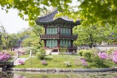 Korean Palace, Gyeongbokgung Pavilion, Seoul, South Korea. Spring at the Korean Palace Pavilion, at Gyeongbokgung palace Seoul, South Korea. Beautiful trees and royalty free stock photo