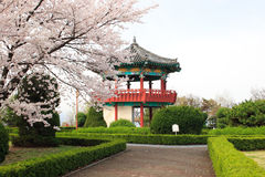Korean Pavillion in a park. A traditional style Korean pavillion in a park near Seoul, Korea Royalty Free Stock Photo