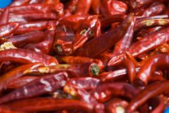 Korean Peppers. For sale in a market Royalty Free Stock Photography