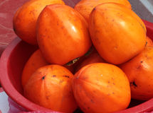 Korean persimmons Royalty Free Stock Photo