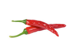 Korean red chili peppers Royalty Free Stock Images