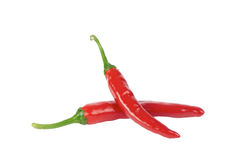 Korean red chili peppers Stock Photos