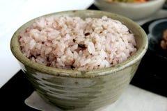 Korean rice stock image