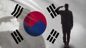 Korean soldier silhouette saluting against national flag, military operation. Stock footage stock video