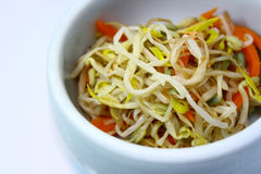 Korean Sprout. Vegetable,carrot garlic Stock Photography