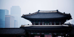 Korean style castle roof Royalty Free Stock Images