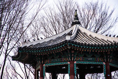 Korean style castle roof. In garden Royalty Free Stock Photo