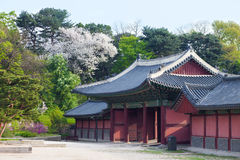 Korean style houses in Changdeokgung Palace in Seoul, Korea. Royalty Free Stock Photos