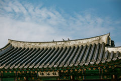 Korean Temple Roof Detail with Pigeons Near Jungang Market. Jeju, South Korea Royalty Free Stock Image