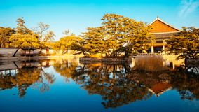 Korean traditional architecture Gyeongbokgung Palace at autumn in Korea Royalty Free Stock Images