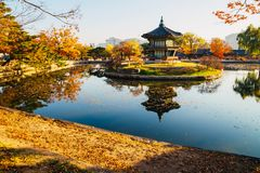 Korean traditional architecture Gyeongbokgung Palace Hyangwonjeong at autumn Stock Photos