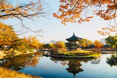 Korean traditional architecture Gyeongbokgung Palace Hyangwonjeong at autumn Royalty Free Stock Photos