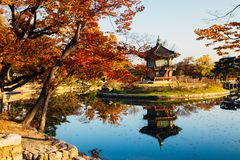 Korean traditional architecture Gyeongbokgung Palace Hyangwonjeong at autumn Stock Image