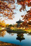 Korean traditional architecture Gyeongbokgung Palace Hyangwonjeong at autumn Stock Images
