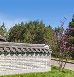Korean traditional garden  in a public garden in Kiev in springt Royalty Free Stock Image