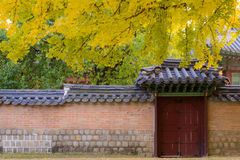 Korean traditional gate and wall Royalty Free Stock Photos