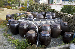 Korean village house front yard jars tradition sauces. Gochujang, dwaenjang, soy sauce and several other Koreaen base sauces require fermentation, and these jars Stock Image