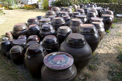 Korean village house front yard jars tradition sauces Stock Photo
