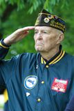 Korean War Veteran Saluting stock photo