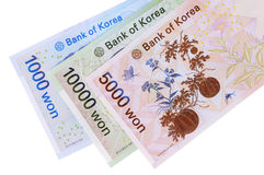 Korean Won currency bills isolated on white background Royalty Free Stock Photo