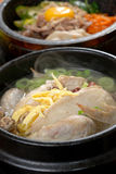 Koreanische Hühnersuppe Stockbild