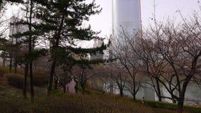 Koreanische Leute gehen in Park nahe Lotte World Tower, Seoul stock video