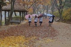 Koreanische Studentinnen gehen unter Regenschirme in der Herbstfarbe an traditionellem Volksdorf Namsangol, Seoul, Südkorea - 2.  Stockbilder