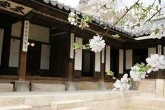 Koreanischer Palast Stockfotos