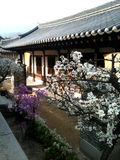 Koreanisches Haus lizenzfreie stockfotografie