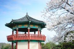 Koreanisches Pavillion durch Bäume in der Blüte. stockfotografie