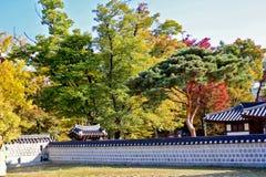 Koreansk by Royaltyfria Foton