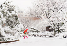 Koreansk flicka som går på den snöig dagen som rymmer det röda paraplyet arkivfoton