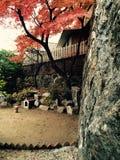 Koreansk gård royaltyfri foto