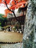 Koreansk gård Royaltyfri Bild