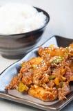 Koreansk nötköttgrillfest Fotografering för Bildbyråer