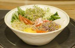 Koreansk nationell mat. Royaltyfri Bild