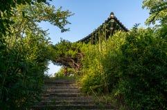 Koreansk paviljong och trappa Royaltyfri Fotografi
