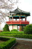 koreansk pavillion royaltyfri fotografi