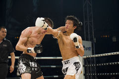 koreansk ryss för bangkok boxare som är thai vs Royaltyfria Bilder