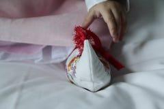 Koreanska traditionella behandla som ett barn skor och klänningen royaltyfri bild