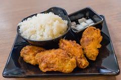 Koreanska varma såsstekta kycklingar och kryddigt som tjänas som med ris Arkivbilder