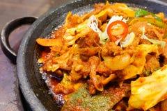 Koreanskt kryddigt marinerat griskött med chili och kimchi Royaltyfria Foton