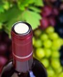 Korek wino butelka Obraz Royalty Free