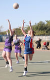 Korfball League Ladies games Royalty Free Stock Images