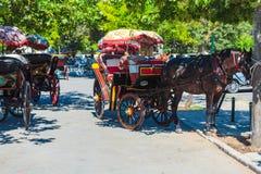 KORFU, GRIEKENLAND - JULI 7, 2011: Paard met toeristencabine bij stadscen Stock Foto