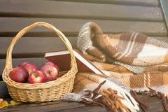 Korg av äpplen på en bänk höstbefruktning Arkivfoton