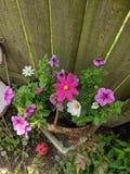 Korg av blommor royaltyfria foton