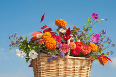 Korg av brilliantly kulöra blommor och fallfolen Royaltyfri Bild