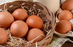Korg av bruna ägg Royaltyfria Foton